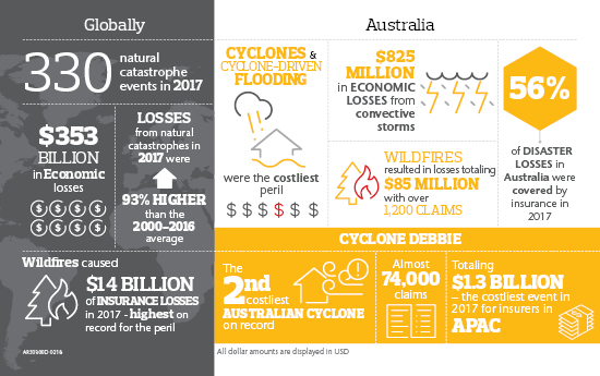 Catastrophe Report Infographic